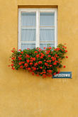 window with flowerboxes stock photography | Poland, Warsaw, Window with flowerboxes, Old Town, Stare Miasto, image id 7-700-137