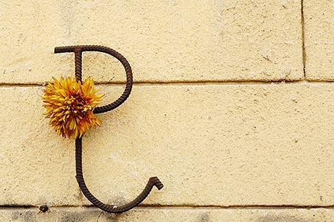 image 7-715-8001 Poland, Jezowe, Decorative ironwork on wall