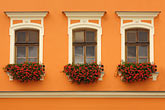 windows with flowerboxes stock photography | Poland, Tarnow, Windows with flowerboxes, Rynek, Town Square, image id 7-720-8121