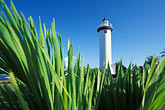 maritime stock photography | Puerto Rico, Rinc�n, Lighthouse (El Faro), image id 1-353-47