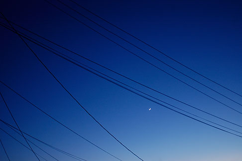 image S5-10-1555 California, Albany, Powerlines