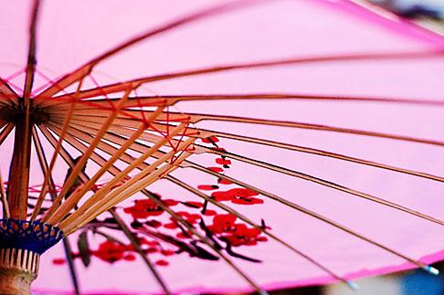 image S5-91-5378 Still life, Umbrella