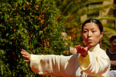 woman stock photography | California, San Francisco, Chinese Martial Artist, image id 5-620-2995