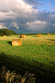 bale stock photography | Scotland, Aberdeenshire, Afternoon light on fields, image id 1-537-38