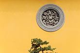 yellow stock photography | China, Shanghai, Longhua Temple, window and pine tree, image id 7-620-4825