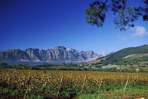 image 1-415-22 South Africa, Franschhoek, Vineyards, Franschhoek Valley