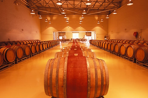 1-420-12 stock photo of South Africa, Helderberg, Barrel cellar, Morgenster Wine Estate