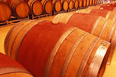 image 1-420-17 South Africa, Helderberg, Barrel cellar, Morgenster Wine Estate