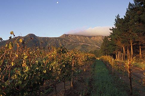 image 1-421-72 South Africa, Stellenbosch, Moonrise over Simonsberg, Delheim winery
