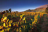 morning light stock photography | South Africa, Stellenbosch, Moonrise over Simonsberg, Delheim winery, image id 1-421-78