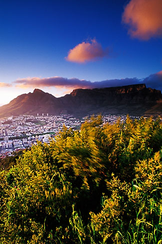 image 5-469-1 South Africa, Cape Town, Table Mountain and city at dawn from Lions Head