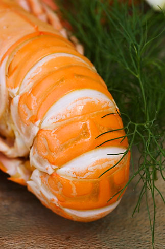 image 5-710-5697 Food, Shrimp