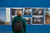 display stock photography | Sweden, Stockholm, Street Market, Photography exhibit, image id 5-720-4168