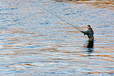 one person stock photography | Sweden, Stockholm, Fishing in the Norrstrom, image id 5-720-7790