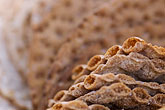 grain stock photography | Food, Rye cracker crispbread, image id 5-730-3644