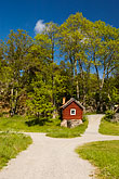 tree stock photography | Sweden, Grinda Island, Red house, image id 5-730-6436