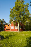 tree stock photography | Sweden, Grinda Island, Red summer house, image id 5-730-6478