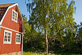 tree stock photography | Sweden, Grinda Island, Red summer house, image id 5-730-6498
