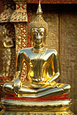 sit stock photography | Thailand, Chiang Mai, Golden Buddha, Wat Phra That Doi Suthep, image id 0-360-61