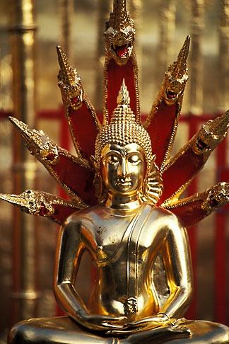 image 0-360-68 Thailand, Chiang Mai, Golden Buddha, Wat Phra That Doi Suthep