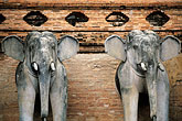 elephant statue stock photography | Thailand, Chiang Mai, Wat Chedi Luong, image id 0-362-34