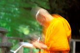 orange stock photography | Thailand, Chiang Mai, Monk studying, Wat Chedi Luong, image id 0-362-47