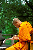 side view stock photography | Thailand, Chiang Mai, Monk studying, Wat Chedi Luong, image id 0-362-54