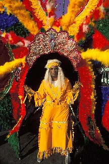 8-142-1 stock photo of Trinidad, Carnival, Costumed dancer
