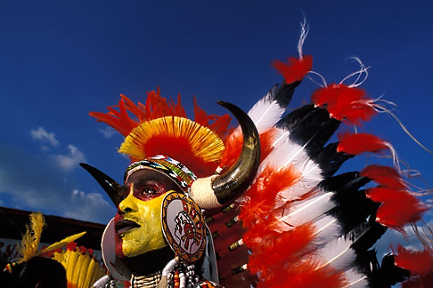 image 8-143-5 Trinidad, Carnival, Native American costume