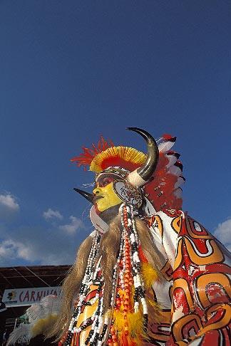 image 8-143-8 Trinidad, Carnival, Native American costume