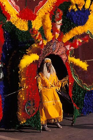 image 8-145-11 Trinidad, Carnival, Indian dancer