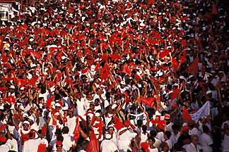 8-145-7 stock photo of Trinidad, Carnival, Dancers passing main grandstand