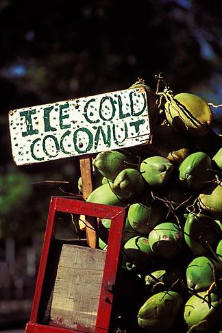 image 8-9-3 Trinidad, Port of Spain, Coconuts for sale