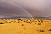 inclement weather stock photography | Tunisia, Camel and rainbow, image id 3-1100-42