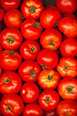 color stock photography | Food, Tomatoes in market, image id 8-803-4710