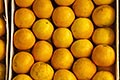 stall stock photography | Uruguay, Colonia del Sacramento, Oranges in market stall, image id 8-803-4721