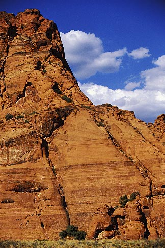 image 3-863-52 Utah, St George, Snow Canyon State Park