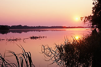 7-394-43 stock photo of Zimbabwe, Zambezi NP, Sunset on the Zambezi River