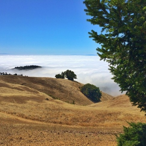 Trojan Point, Mount Tamalpais State Park